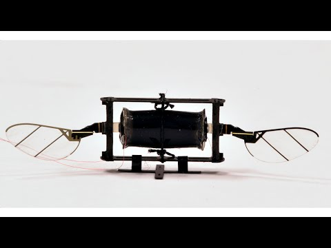 Insect-like robots