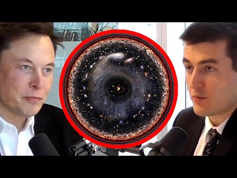 Elon Musk: What's Outside the Simulation? | AI Podcast Clips