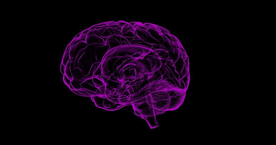 AI Based on Slow Brain Dynamics