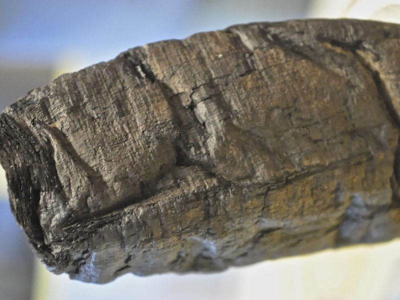 Machine Learning Used To Uncover The Secrets Of Pompeii Scrolls